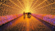 Nabana no Sato: One of Japan's best winter light shows by tokyotimes: Powered by millions of small solar-powered light bulbs. #Winter #Light_Show #Japan