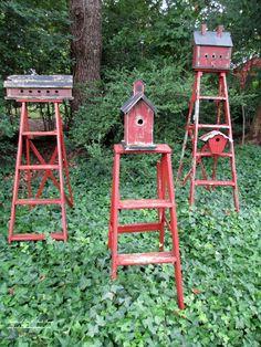 Birdhouses mounted on old ladders (Garden of Len & Barb Rosen)