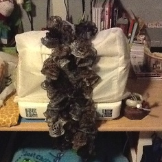 Sashay yarn scarf.  Browns and Gray's.