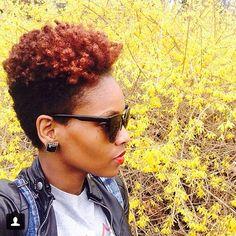 Natural hair. Tapered. Twa. Colored natural hair. Short natural hair. Big chop. Inspiration