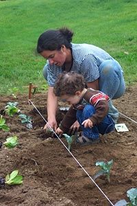 Gardening with kids- Parents Primer