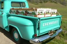 i would like this for my home depot truck!