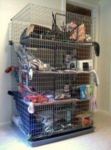 Pet Rats Pet Rats Pet Rats Do it yourself rat house! (Would be cool for guinea pigs)
