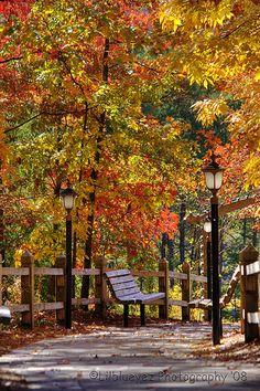 Autumn... I Love You!!!