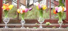 Glass vases and tulips available www.couturehomeaz.com