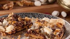 Chewy S'mores Squares