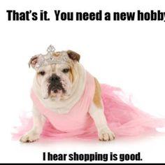 Love a dog in a tutu!