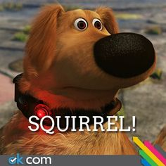 Up! This is what Chance would sound like if he could talk :) 15 gadget, dogs, dog collars, squirrels, disney movi, talk dog, tech gadgets