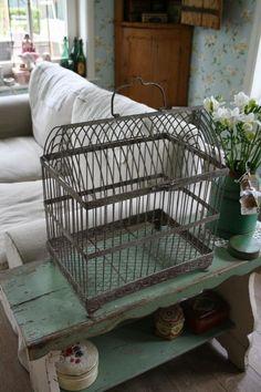 bird cage, birdcag