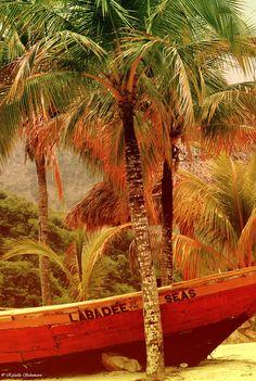 Labadee- Haiti    Labadee of the Seas by rafaella