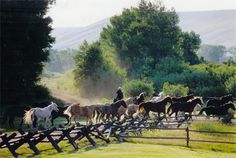 The Vee Bar Guest Ranch in Southern Wyoming, the setting of both Wyoming Solace and Retreat