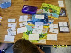 Open Word Sorting in Kindergarten