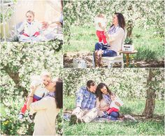 spring mini sessions apple blossoms Michigan family