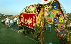 Jaipur Elephant Festival. This event happens on Holi eve. Elephants are decorated with brightly colored textiles and paints. In India, bright colors have become synonymous with religious traditions. #holi #india #culture #textiles