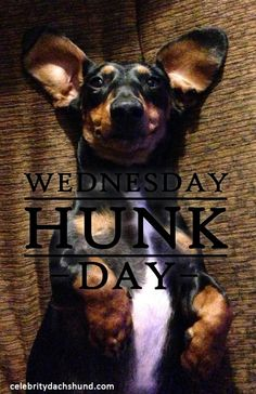 Today's Wednesday Hunk is MAGNUM from New Jersey.