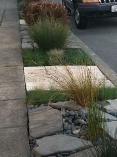 landscape designs for the strip between the sidewalk and street - Google Search