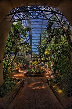 Botanical Garden - Balboa Park, San Diego, California