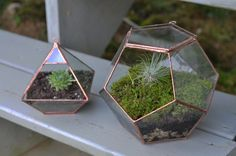 plant holders, geometric shapes, colors, little gardens, growing up