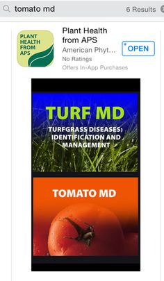 Tomato Troubles - There is an App for That : Yard and Garden News : University of Minnesota Extension