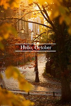 Just because it's my favorite month of the year ;)