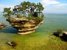 lake michigan, tree, lake huron, turnips, travel, wonderful places, turnip rock, rocks, island