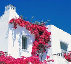 Yria Hotel Paros by www.myparadissi.com