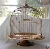 copper bird cages