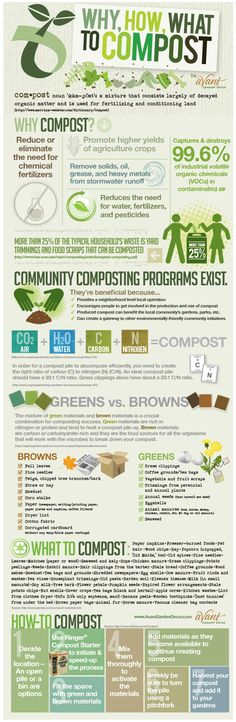 green thumb, yard, compost brown, greenthumb, outdoor, what to compost, how to start composting, why compost, garden infographic