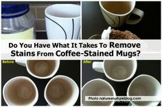 Do You Have What It Takes To Remove Stains From Coffee-Stained Mugs?