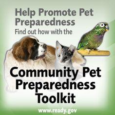 Community Pet Preparedness Kit