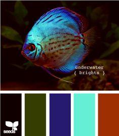 underwater brights minus the bright aqua