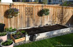 Garden box similar to the one we planted today- need some pretty hanging plants for the fence, too!