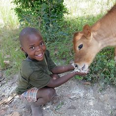 The gift of a heifer can change lives, giving hope to families in even the most dire circumstances. Give Heifer International this Christmas.