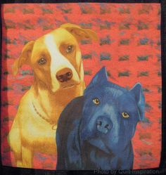 """Somebody Say Treat?""  by Suzan Engler. 2013 Houston IQF.  Posted at Quilt Inspiration: It's Raining Cats and Dogs - Part 2"