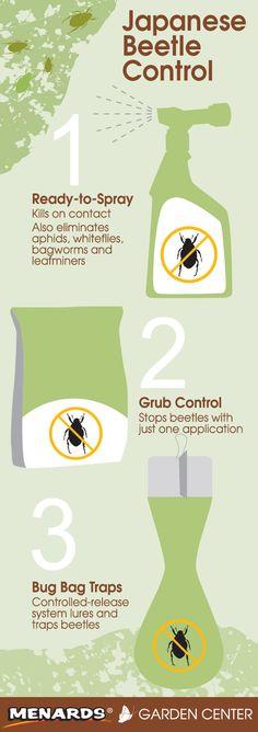 Japanese Beetle Control – Ready-to-Spray, Grub Control, and Bug Bag Traps. Read full article... http://www.menards.com/main/c-14368.htm?utm_source=pinterest&utm_medium=social&utm_content=japanese_beetles&utm_campaign=gardencenter