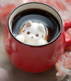 Marshmallow Cats floats in your coffee.  Omg so cute. Coffee + cat = Win!