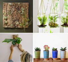 10 DIY Plant Ideas for Fall