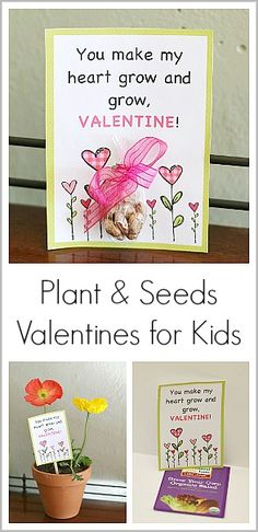 Plant & Seeds Homemade Valentine for Kids (with Free Printable) ~ Buggy and Buddy