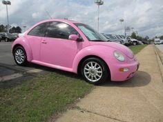 cute pink beetle!