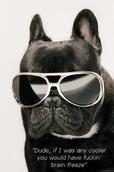 Cool dude.