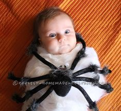 Coolest Spider Attack Baby Costume... Coolest Halloween Costume Contest