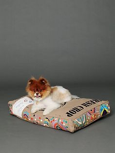 New dog beds! http://www.freepeople.com/whats-new/embroidered-coffee-sack/