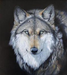 wolves  karen-wiles.artis... Fine Art America