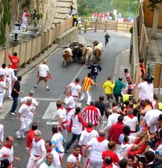 Pamplona Bull Run. The Running of the Bulls is a practice that involves running in front of a small group (typically a dozen) of bulls that have been let loose, on a course of a sectioned-off subset of a town's streets.
