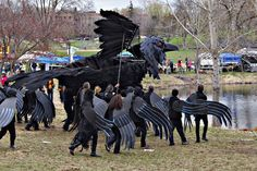 I'm Not Compulsive!; I Do This All the Time!: Giant Crow in Minnesota In the Heart of the Beast