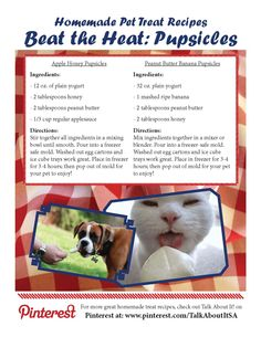 Two great homemade pet treat recipes to make with your kids and share with your pets! (recipe is good for humans too)