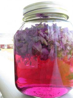 making violet vinegar