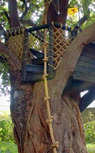 Super tree house with knotted rope for climbing. Want fit kids? Give them stuff like this!  Wish I had one too!