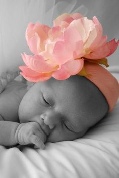 Love this for a newborn photo