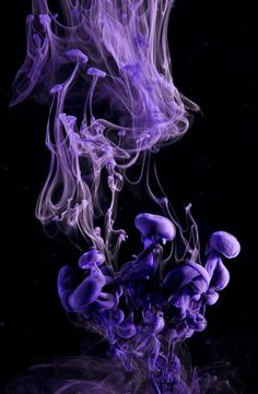 Ink, Water, Purple, Photograpy